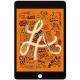 Ecran Retina pour iPad Mini 5 noir, vitre tactile de remplacement