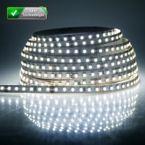 Ruban 300 LED blanc froid 5 mètres (60 LED M) - 3528 SMD - IP65