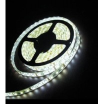 Ruban 300 LED blanc Froid 5 mètres (60 LED m) - 5050 SMD - IP44